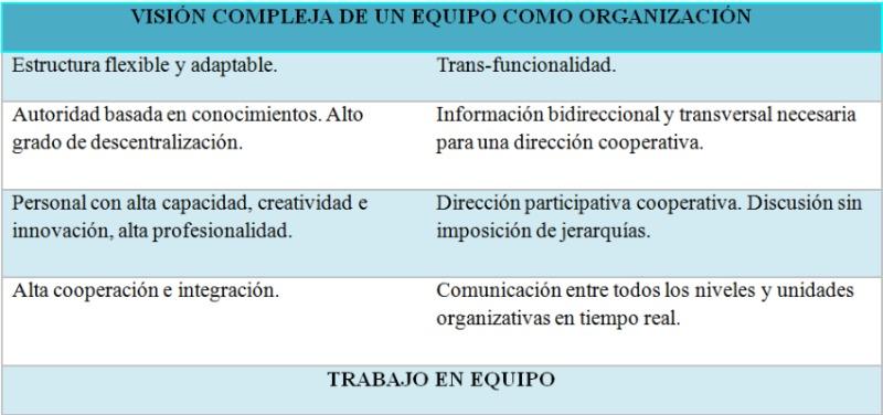 Visión compleja de un equipo como organización