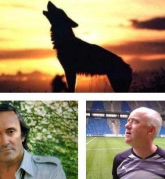 La importancia de los lobos y las dinámicas de grupo por Ismael Díaz Galán